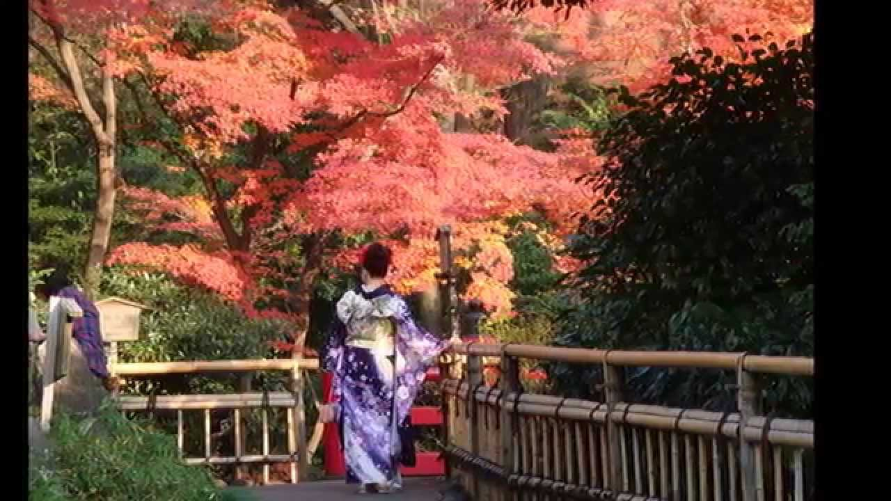 Jardines japoneses 2 hd 3d arte y jardiner a dise o de for Diseno de jardines 3d