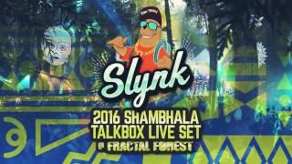 Slynk - LIVE @ Shambhala Fractal Forest 2016 (FULL MIX)