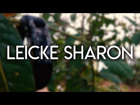 Leicke Sharon Activity Tracker - Recensione di TechBuzz.it