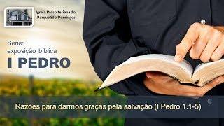 I. P. Pq. São Domingos - 21/07/2019 - Razões para darmos graças pela salvação