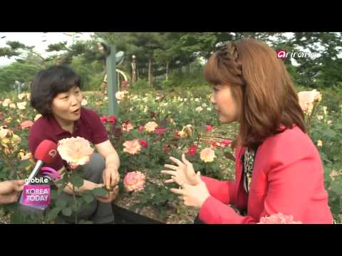 Korea Today - LIVE FROM KOREA - Seoul Grand Park, Gwacheon, Gyeonggi Province