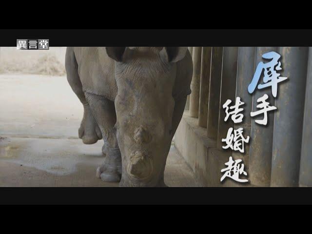 【民視異言堂】犀手結婚趣
