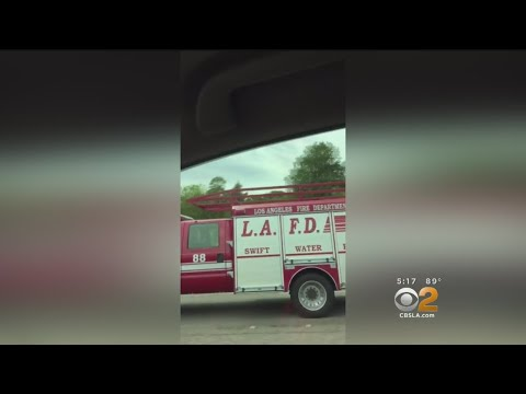 LAFD Firefighters In Florida Helping Irma Victims