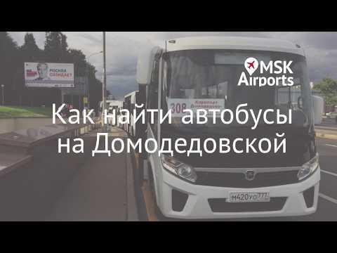 Где находится остановка автобусов в аэропорт Домодедово