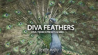 u-he diva presets - diva feathers -  presets library for u-he diva synthesizer