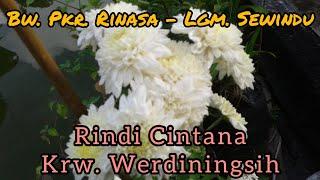 Download Mp3 Gending Jawa//bw. Pkr Rinasa - Lgm. Sewindu By Rindi Cintana