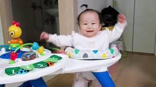 V아기장난감v 피셔프라이스 아기체육관, 이븐플로 아마존…