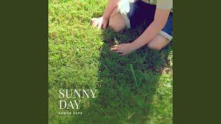 Play Sunny Day