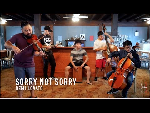 SORRY NOT SORRY | Demi Lovato || JHMJams...