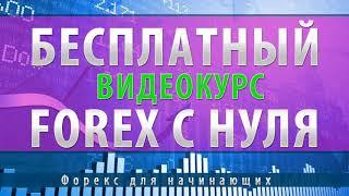 Уроки торговли на форекс   Видеокурс по форекс для начинающих