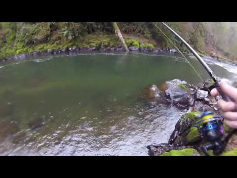 Early Winter Steelhead Fishing