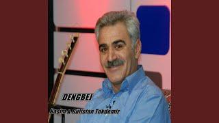 Haşim & Gülistan Tokdemir - Bılbılo