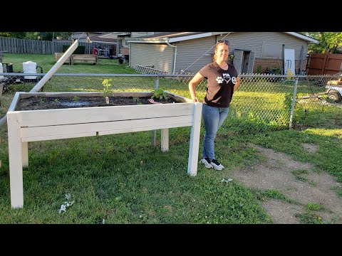How To Build The Perfect Height Elevated, Raised Bed!