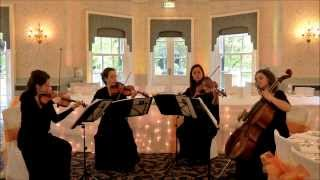 BBC Planet Earth (Hoppipolla) - Wedding String Quartet