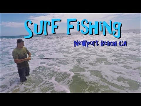 Summer Surf Fishing Newport Beach CA