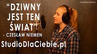 Download Dziwny jest ten świat - Czesław Niemen (cover by Sabina Pałac) MP3 song and Music Video