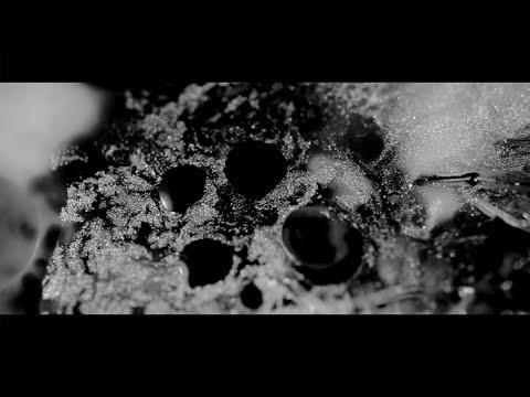 Hania Rani - Eden (Official Video) [Gondwana Records]