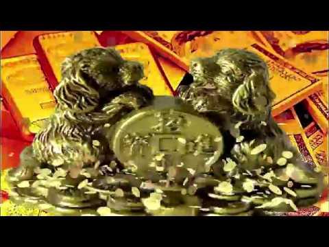Money. Golden dog. Financial Success, Raising Money, Prosperity, Feng Shui