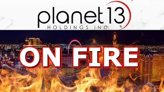 Why Planet 13 Is On Fire 🔥 Buy Or Sell? How Many Shares-PLNHF - PLTH Stock -dispensary-holdings inc