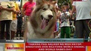 BT: Tamang pag-aalaga ng mga hayop, binigyang diin ngayong World Animal and World Rabies Day