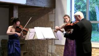 Dvorak Terzetto Op 74 for 2 Violins & Viola