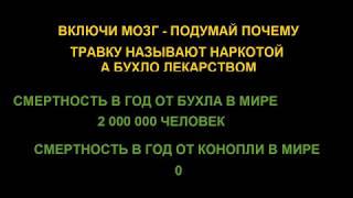 Марихуана  Конопля  Документальный фильм №2 в мире!