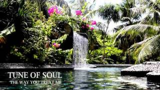 Tune of Soul - The Way You Treat Me