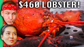 6-lobster-vs-460-lobster-in-vietnam-biggest-lobster-in-vietnam