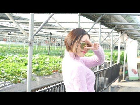 #ChloeEats Ep.1: KOREAN FOOD - Ăn gì ở Hàn Quốc 🇰🇷 | Chloe Nguyen