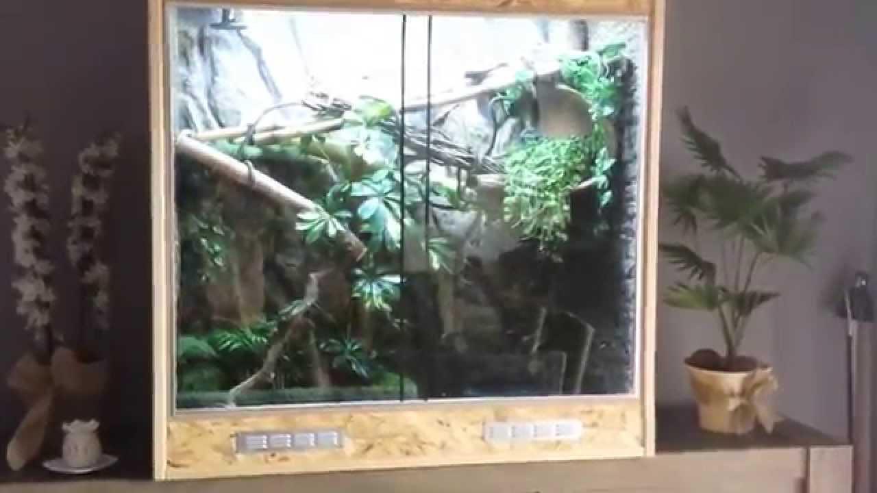 terrarium dragon d'eau