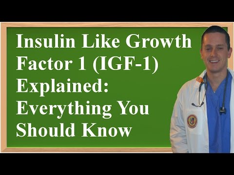 Insulin Like Growth Factor 1 (IGF-1) Explained: Everything You Should Know