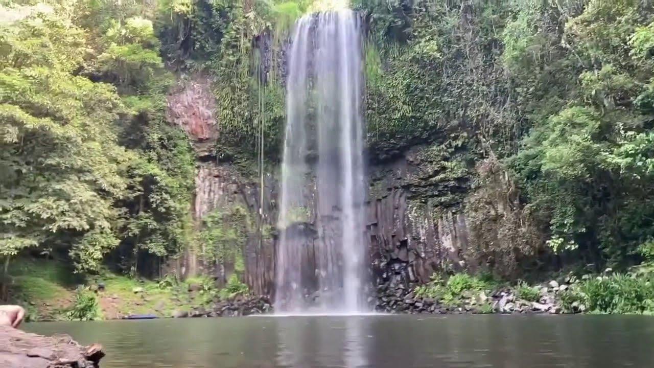 Download Millaa Millaa Falls waterfall falling water jharna