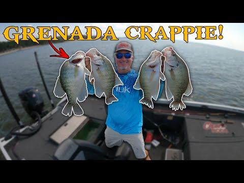 Grenada Mississippi SLAB Crappie