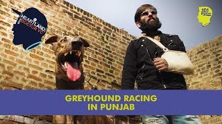 Greyhound Racing In Punjab | 101 Heartland With Doctor VC | Unique Stories From India