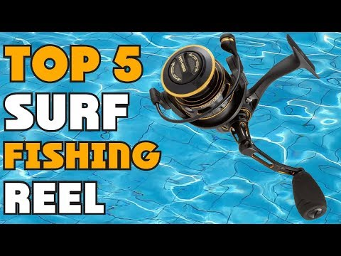 Best Surf Fishing Reel Of 2019 | Surf Fishing Reel Buying Guide