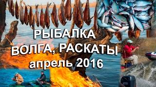 видео Рыбалка в Астрахани: рыболовные базы Астраханской области на Ахтубе, в дельте Волги, на каспийских раскатах