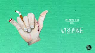 """Tiny Moving Parts - """"Wishbone"""" (Official Audio)"""