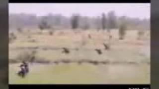 دخول الجيش العراقي الى موصل