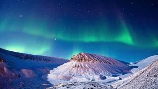 Арктические пустыни глазами учеников 8 класса