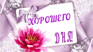Хорошего дня! Прекрасного настроения!