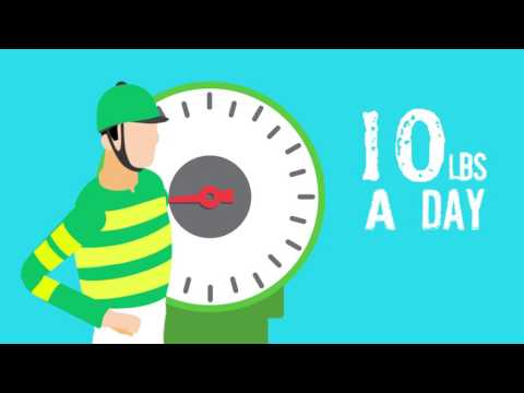 Do you have what it takes to be a top jockey?