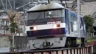 JR山陽本線 貨物列車 EF210ー164指差し呼称