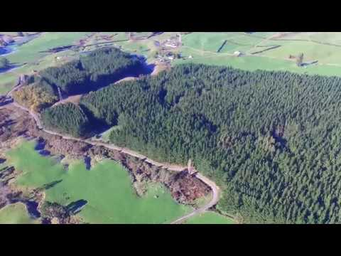 UAV flight over a small woodlot