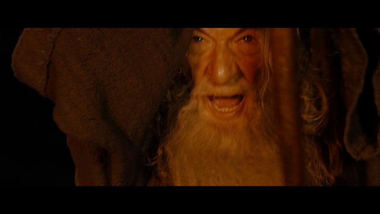 In The Book Gandalf Never Said You Shall Not Pass I Do Not