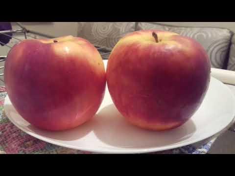 Яблоки   Лигол  от Максима  Гаранжи