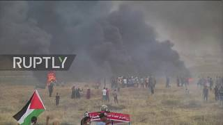 State of Palestine: Gazans injured as March of Return protests continue thumbnail