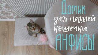 vlog#135 DIY Домик для кошки своими руками!! Мы это сделали!