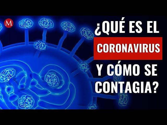 Todo lo que debes saber del coronavirus - YouTube