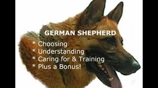 German Shepherd - Choosing - Understanding - Caring For & Training + Bonus!