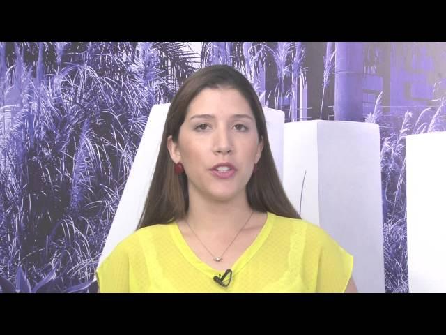ALPHA CHANNEL NEWS 02/01/2016 ESCALADA
